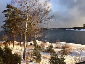 winter-sunshine